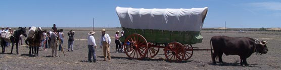 Bent's Old Fort's Santa Fe Trail wagon on the original Santa Fe Trail
