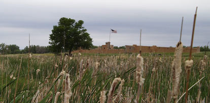 Picture of fort from the marsh