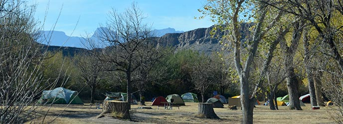 Rio Grande Village Group Campground