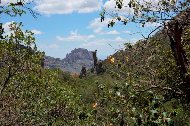 Boot Canyon in the Chisos Mountains