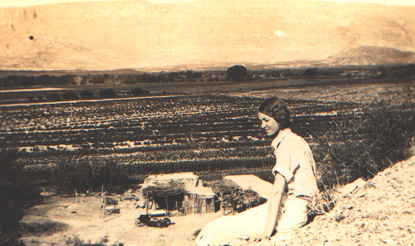 Cotton fields below Castolon, 1933