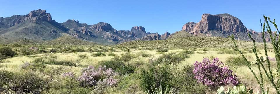 The beauty of Big Bend
