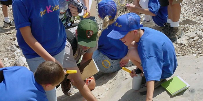 Kids Involved in a Fossil Activity