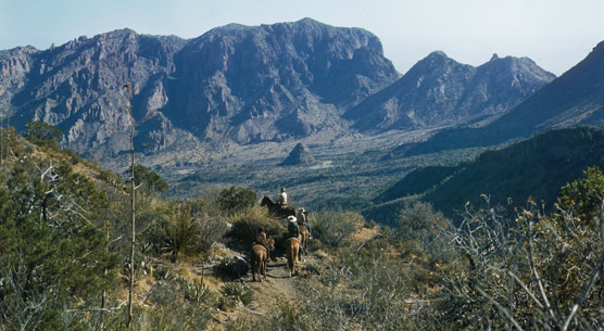 Horseriders descending into the Chisos Basin, 1945