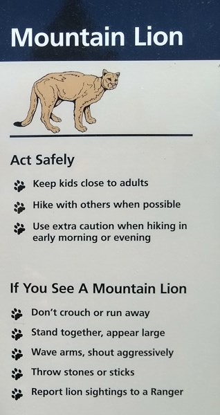 A sign with a mountain lion at the top and safety rules below.