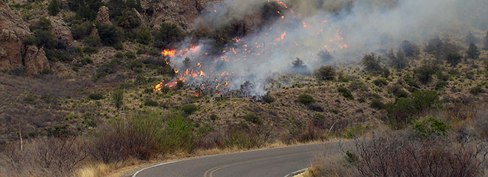 Telephone Canyon Fire