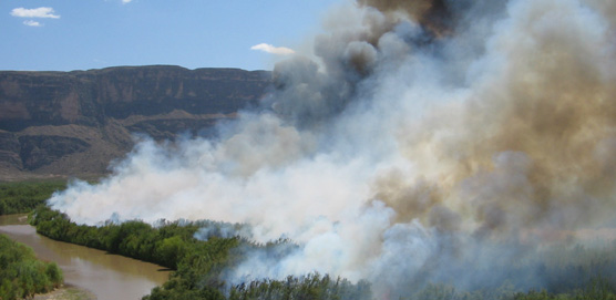 Prescribed burn along the Rio Grande to reduce the occurance of tamerisk and restore the floodplain environment.