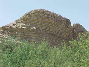 Layers of the Boquillas Formation