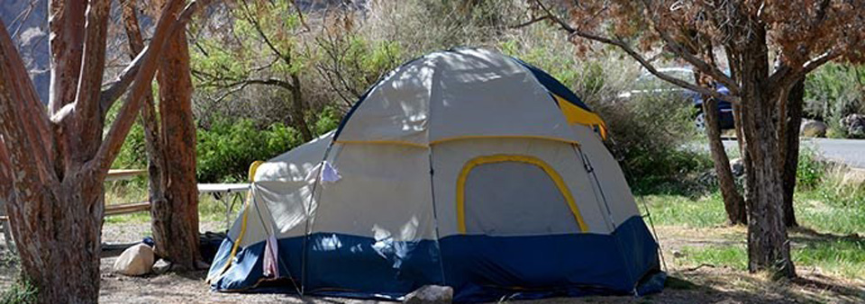 Big Bend NP proposes expanding reservation opportunities for developed campgrounds and backcountry campsites.