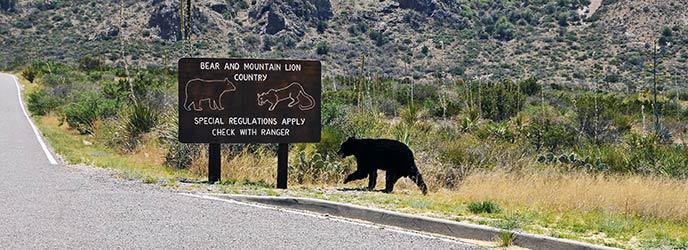 Laws & Policies - Big Bend National Park (U.S. National ...