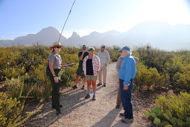 Guided Walk at Sam Nail Ranch