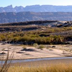 View from the Rio Grande Village Nature Trail