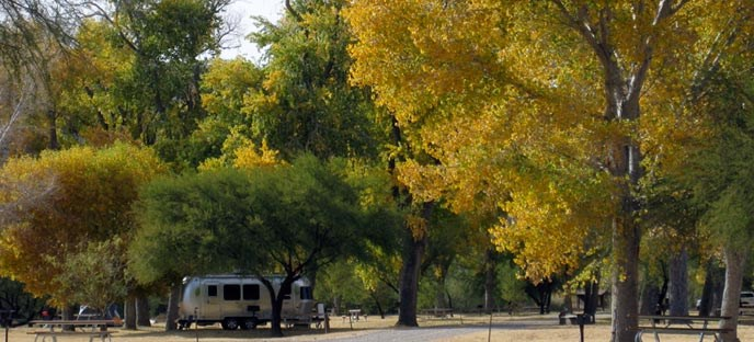 Cottonwood Campground