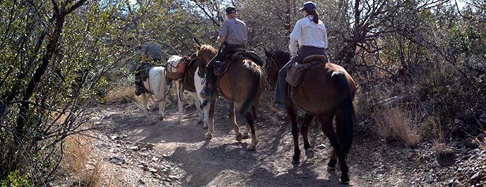 Horseback Riding Big Bend National Park U S National