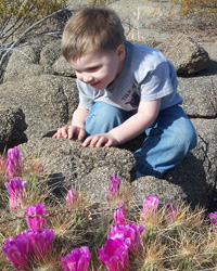 Boy looking at cactus flowers