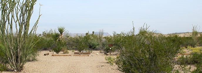 Ocotillo Grove (OG-1)