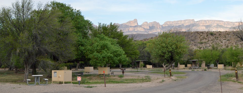 Rio Grande Village campground view