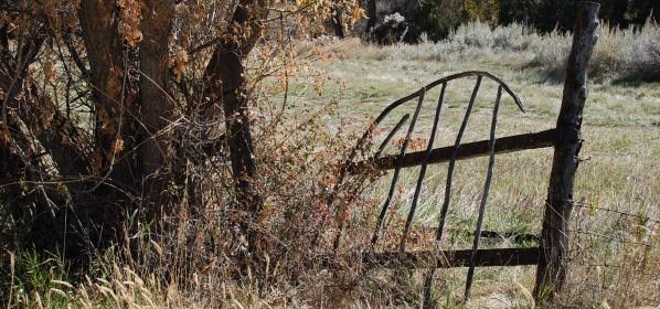 The Old Gate at the Lockhart Ranch