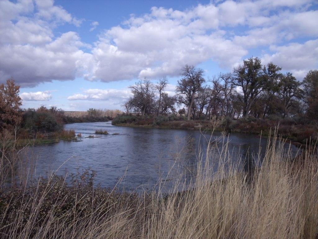 Bighorn river fishing regulations bighorn canyon for Bighorn river fishing