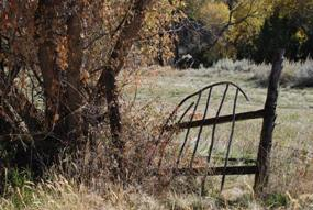 Old gate at the Lockhart ranch