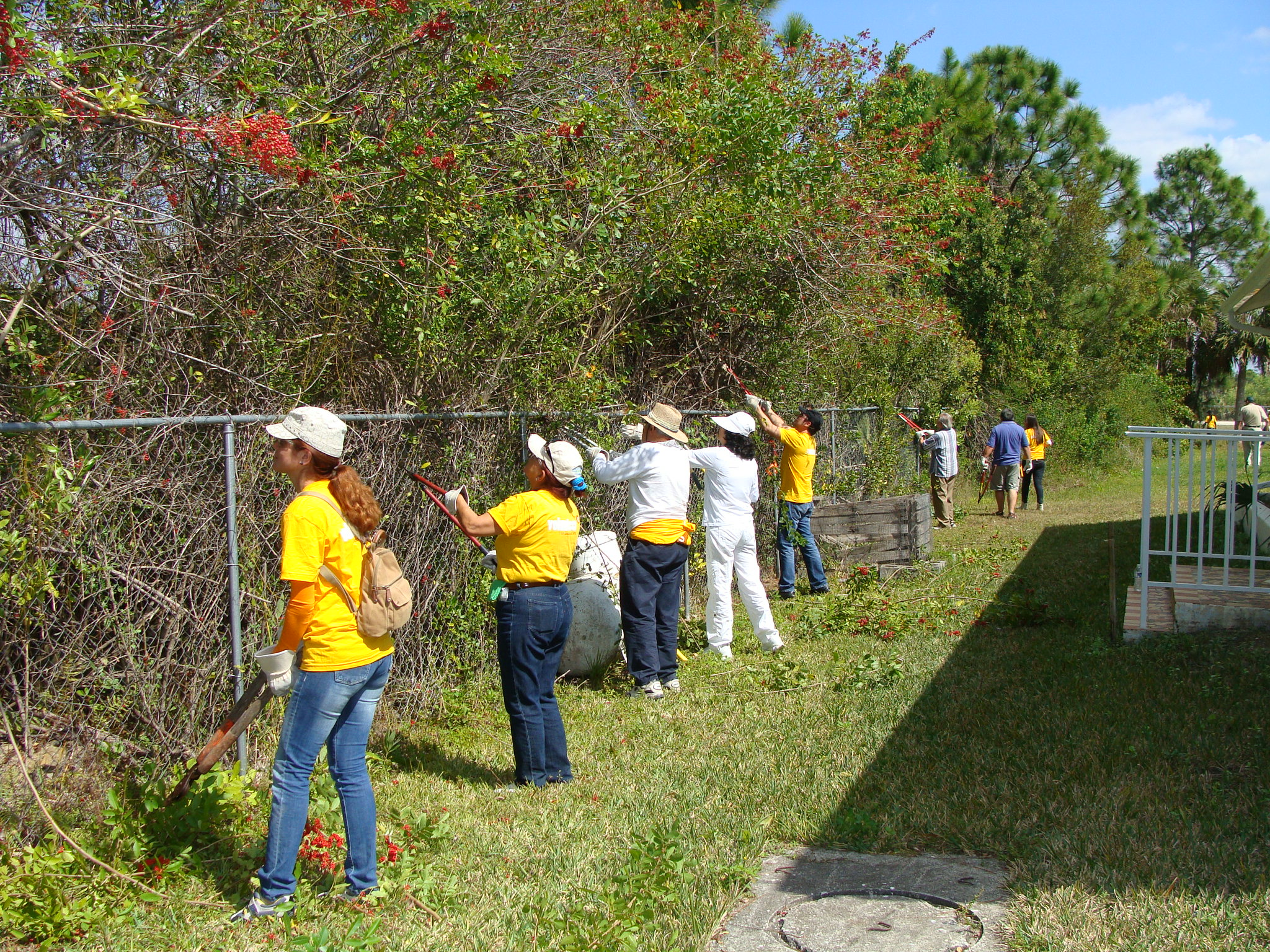 volunteers at work