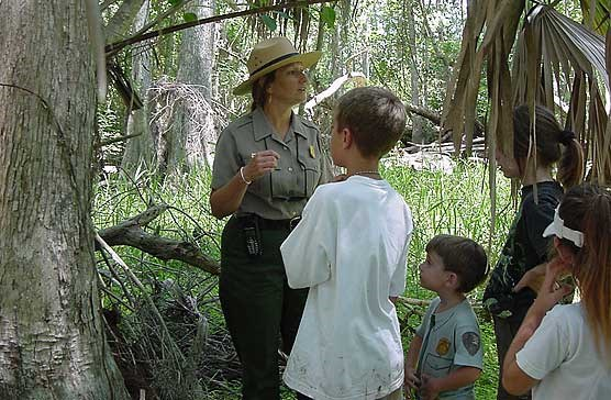 Be A Junior Ranger Big Cypress National Preserve U S