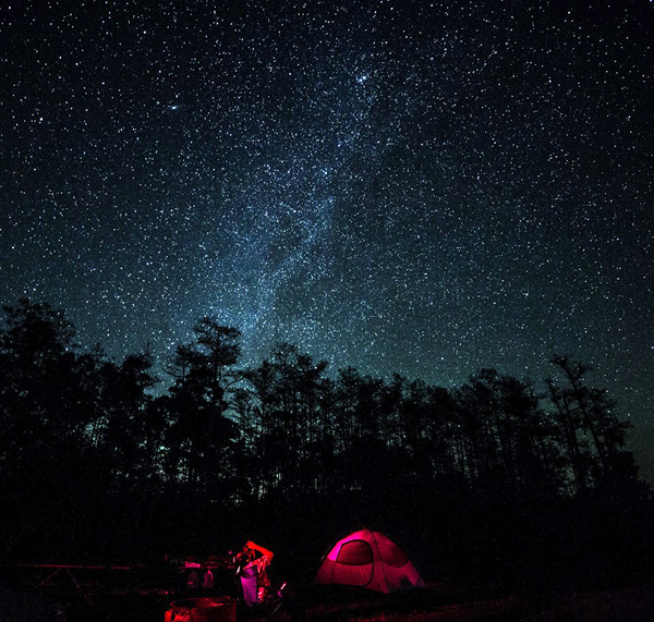 Tent campers under the stars in Big Cypress