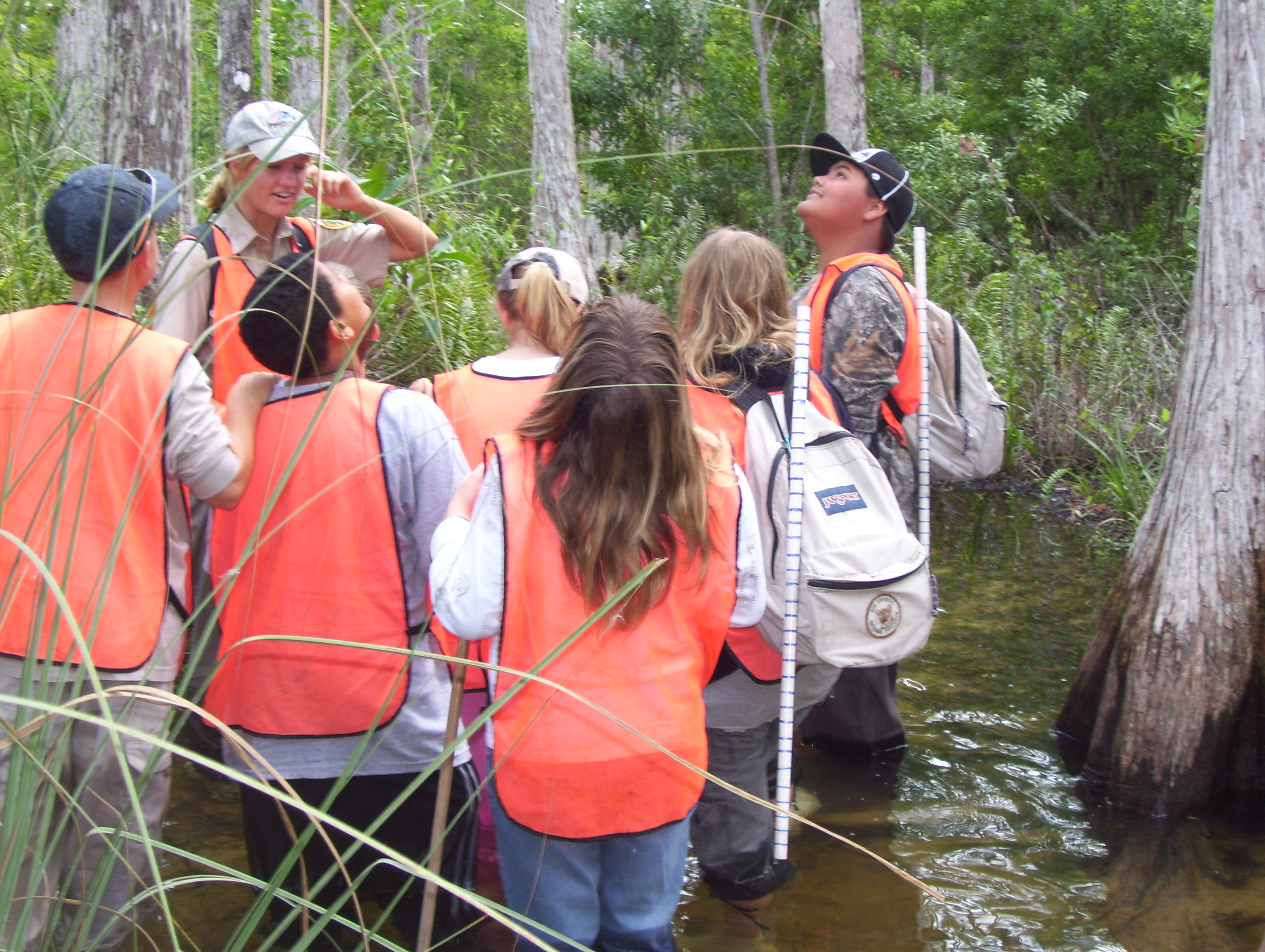 Students explore Big Cypress National Preserve by wading into the swamp.