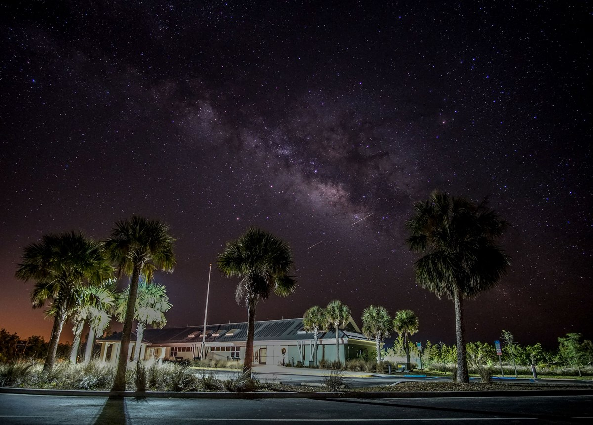 a building, palm trees, parking lot illuminated under a night sky