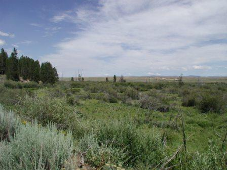 sagebrush landscape on bench near park visitor center
