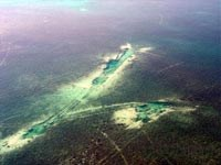 Seagrass grounding