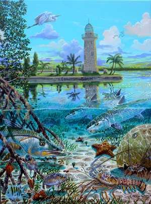 Carey Chen's image of Boca Chita Key is the signature piece for his show <i>Paradise for Marine Life</i>.