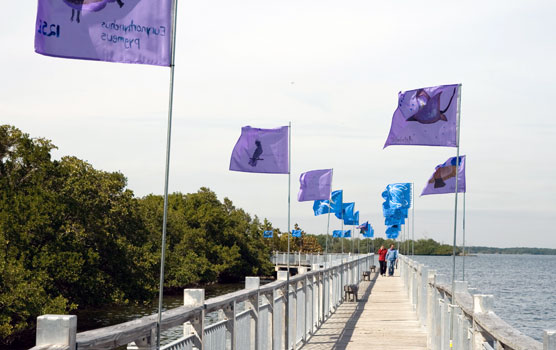 Blue and purple flags line both sides of the Convoy Point Jetty bridge.