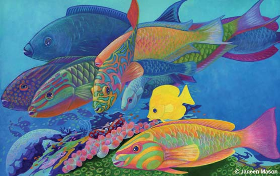"Drawing of colorful reef fish from Janenn Mason's book ""Ocean Commotion: Life on the Reef."""