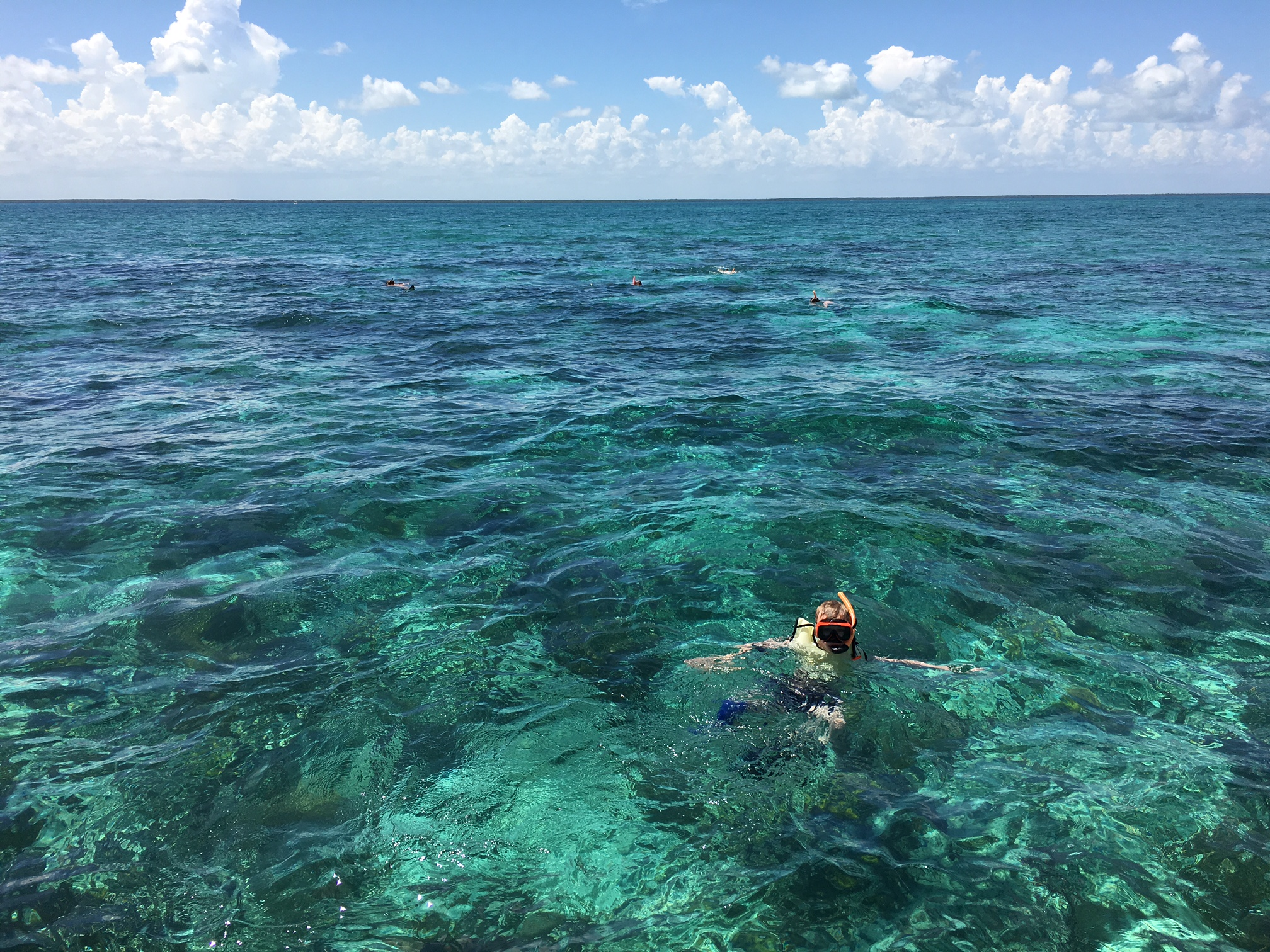 Guided Tours Biscayne National Park