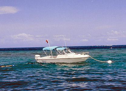 [Image: mooring_buoy.jpg]