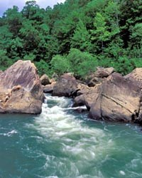 Devil's Jump Rapid on the Big South Fork River.