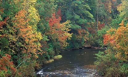 A river running between trees with brightly colored autumn leaves.