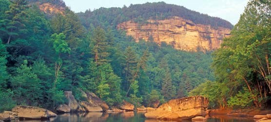 Big South Fork River gorge contains a wide range of habitats.