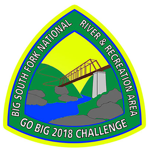2018 GO BIG Challenge Patch
