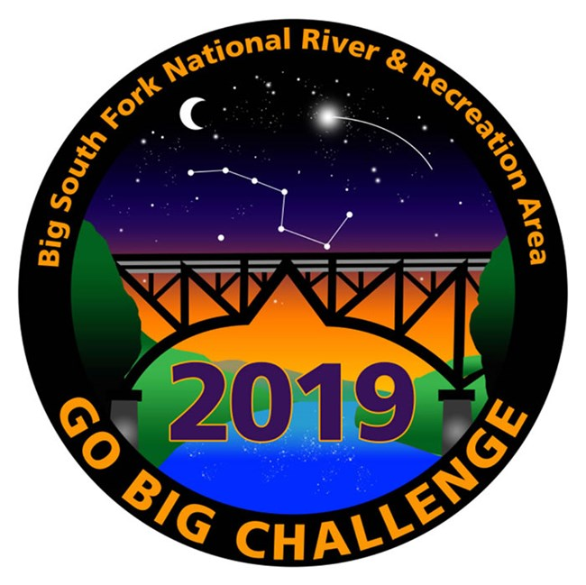 GO BIG Challenge Patch 2019