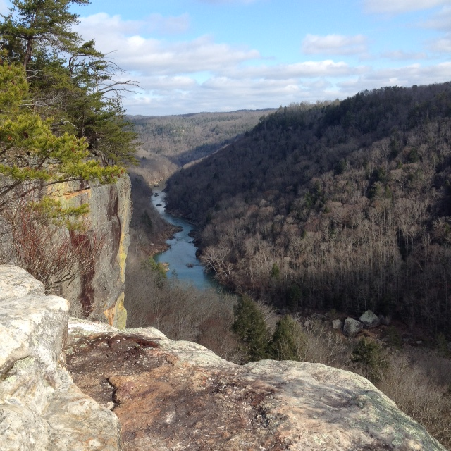 view from Angel Falls Overlook