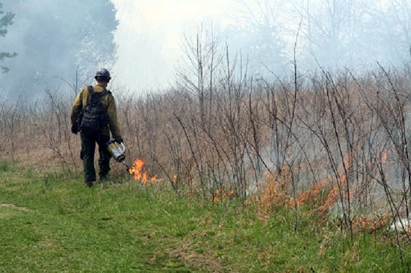 Firefighter participating in prescribed fires