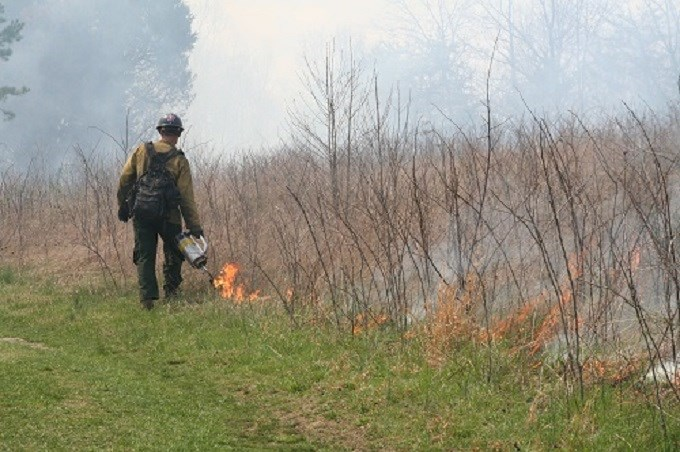 Firefighter conducting a controlled burn