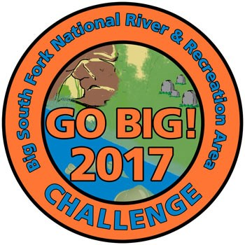 Go Big 2017 Challenge Patch