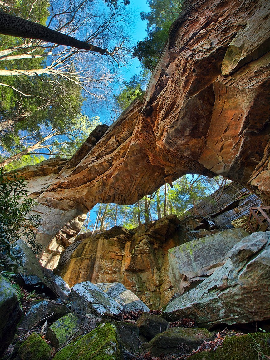 KY Landscapes - Bill Fultz - Split Bow Arch