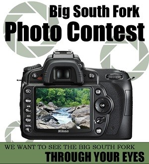 BISO photo contest