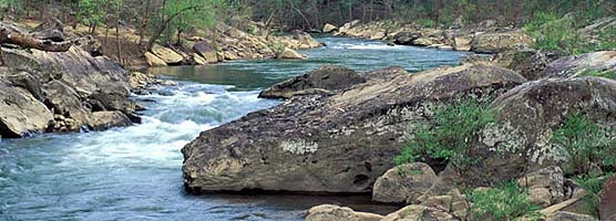 Angel Falls is one of the major rapids on the Big South Fork River.