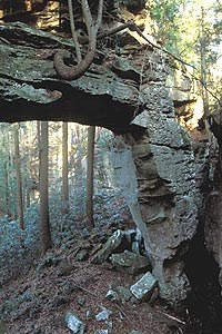 Split Bow Arch located in the Bear Creek Area of Kentucky.