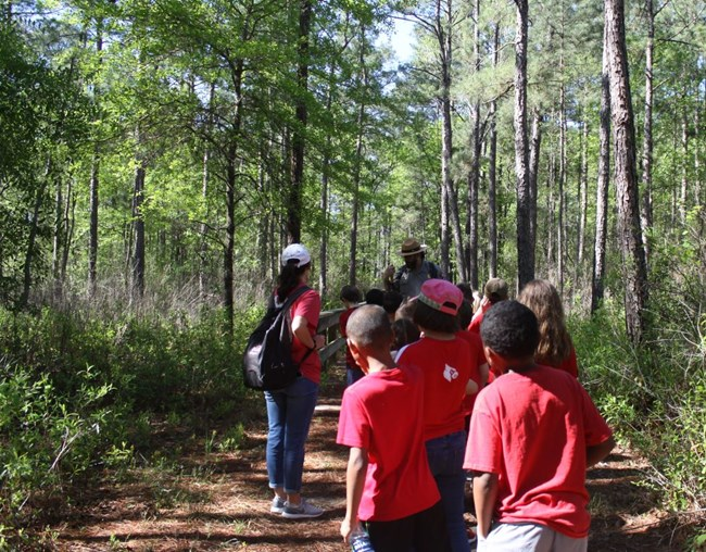 Ranger leading a group of students and teacher on a forest trail